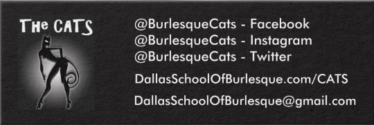 cats-business-card-zazzle